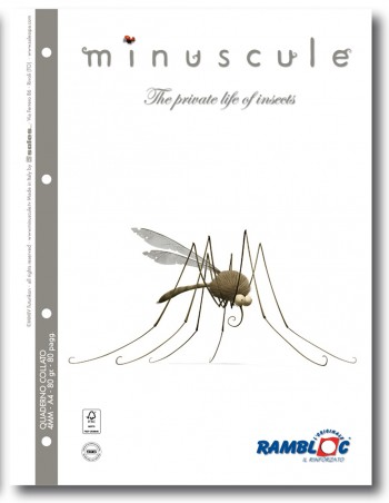 Minuscule_esecutivi.indd