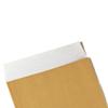 NON-GUMMED FLAP Envelopes
